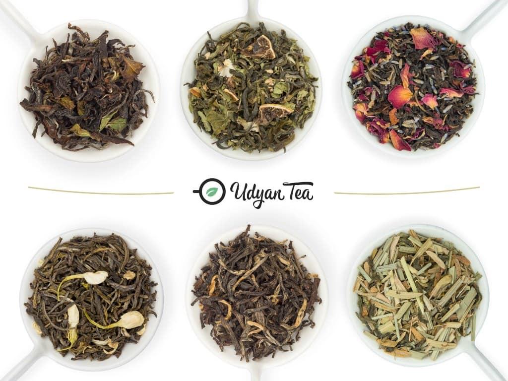 Darjeeling tea leaves variety udyan