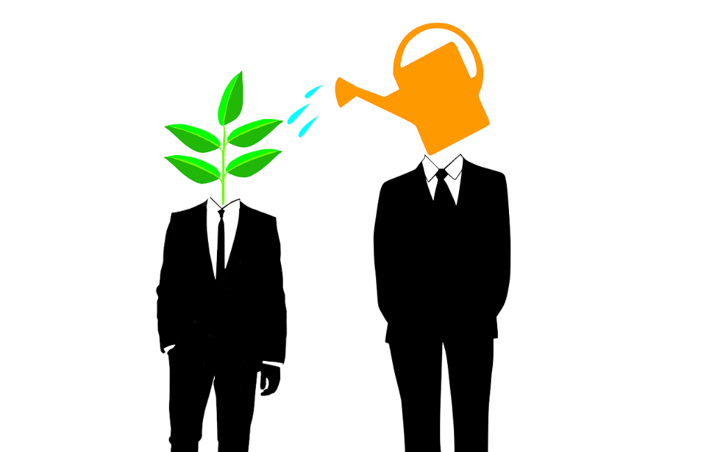 mentor teacher guru find plan watering plan professional business startup