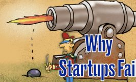 Why Startups Fail, Even After so Much Hard-Work [Video]